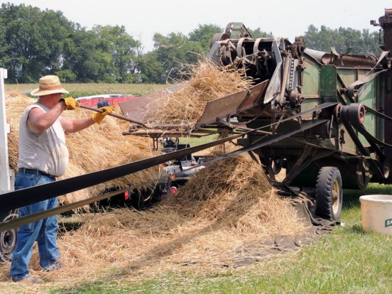 Threshing at Heritage Days